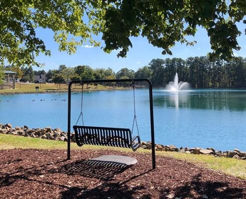 Pine Lake Park Swing